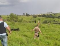 Polícias Civil e Militar apreendem drogas no Bairro Boa Vista