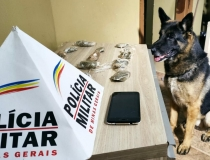 Cão Apollo auxilia PM durante operação contra o tráfico de drogas em Araxá