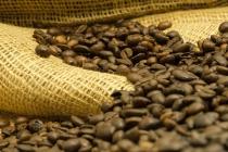 Produção dos Cafés do Brasil ocupa área de 1,82 milhão de hectares dos quais 1,45 milhão são de café arábica e 375,99 mil de conilon